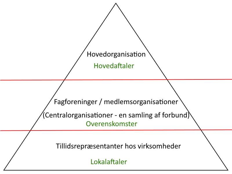 Organisationsdiagram kollektiv arbejdsret